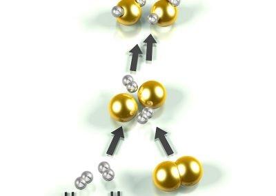 bohres-brennstoffzelle1