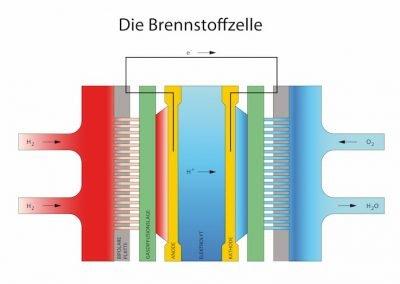 bohres-brennstoffzelle2